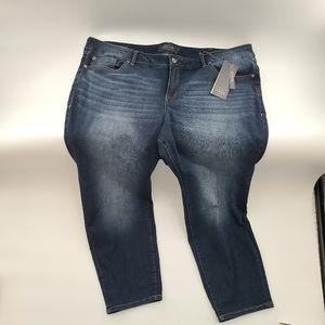Torrid Denim Boyfriend Blue Jeans Plus Size Extra Short 24 XS 24XS